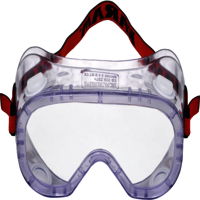 Spectacles for chemical Protection