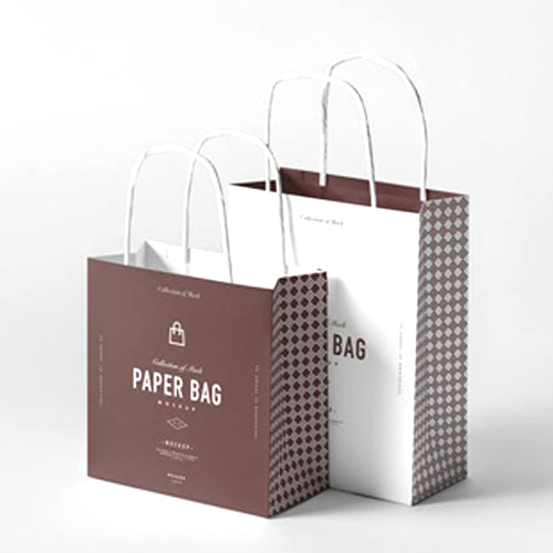 Large Paper Shopping Bag