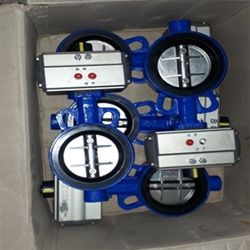 Butterfly Valves Castings