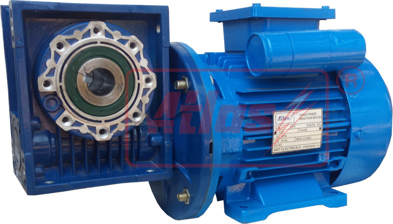 Single Phase Worm Gear Motor Manufacturer,Single Phase Worm Gear