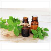 Basil Oil Canum Oil