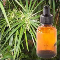 Gingergrass Oil Sofia