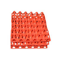 Commercial Plastic Egg Tray (hatchery)