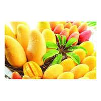 Fresh Juicy Mango