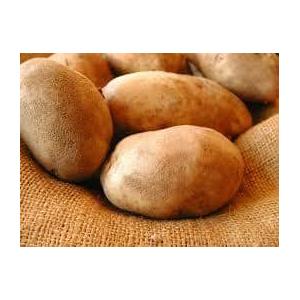 Organic Fresh Potato