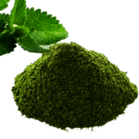 Mint Leaves( powder)
