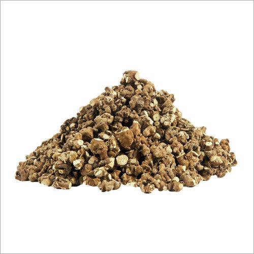 Dried Piplamool