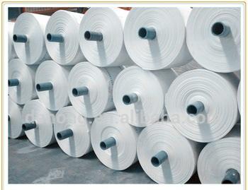 PP Fabric Roll