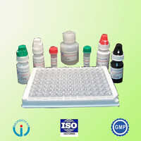 HEV Elisa Test Kit