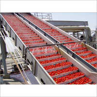 Tomato Ketchup Making Plant