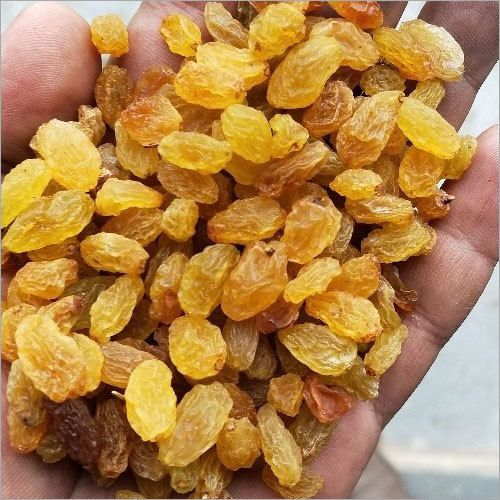 Fresh Golden Raisins