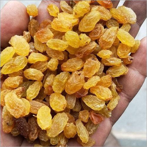 Fresh Golden Raisins