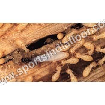 Anti-Termite Solution