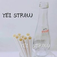 Juice Paper Straws