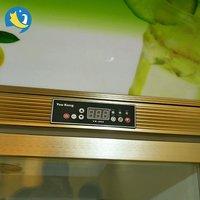 Glass Door Grocery Display Freezer