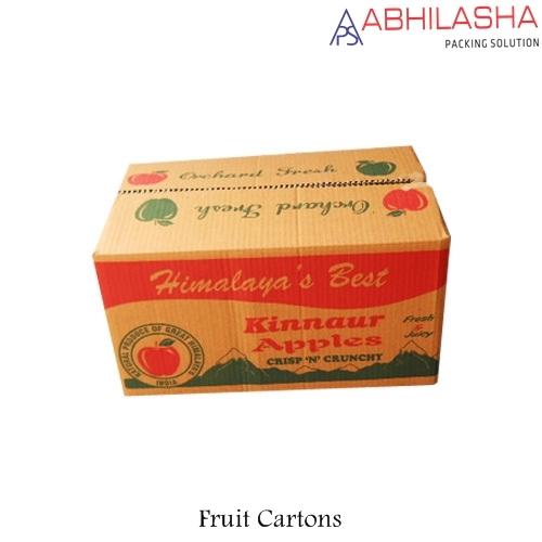 Fruit Carton Box