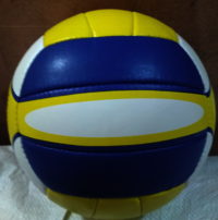 PU Volley Ball Smash