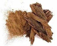 Babbul Seed Extract