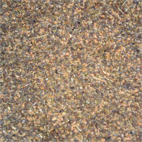Masoor Dal Cattle Feed