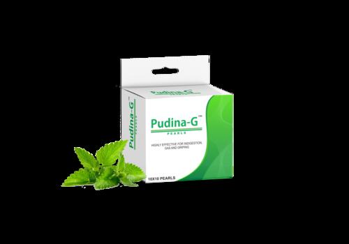 PUDINA - G