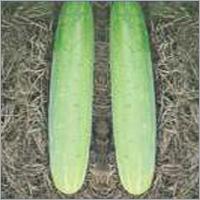 Cucumber Capton