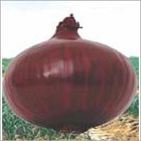 Onion DR-301