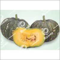Pumpkin F1 RSS-550