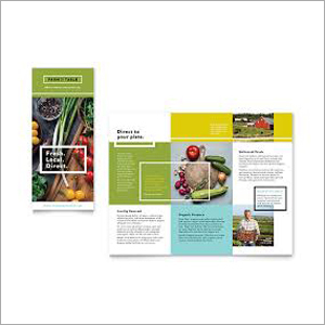 Marketing Promotional Materials Design Printing