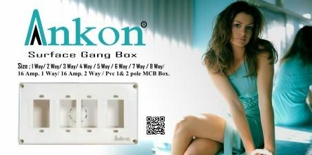 Gang Box