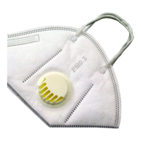 Nanofiber Mask