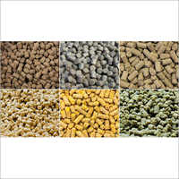 Chokar Cattle Feeds
