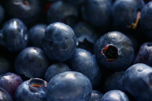 Blueberry Extract, Blueberry Extract Manufacturers