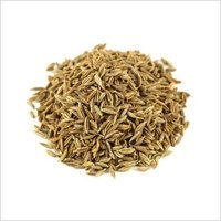Cumin Seed Ready Stock For Export
