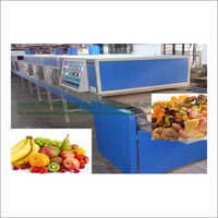 Fruit Slice Electromagnetic Conveyorised Drying-Sterilization System