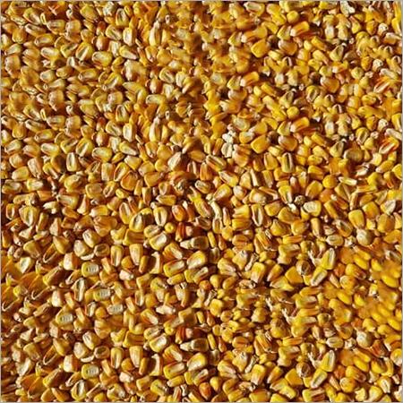 Corn Sort 3