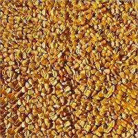 Corn Sort