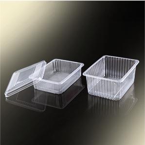 Disposable Plastic Box