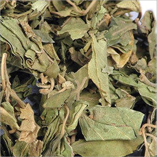 Dry Gymnema Leaves