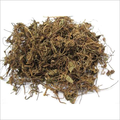 Dried Centella Asiatica