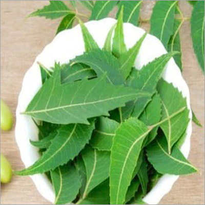 Ayurvedic Neems Leaves