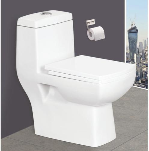 Porcelain Toilet