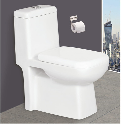 Modern One Piece Toilet