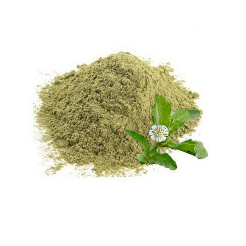 eclipta ala extract