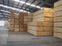 Radiated Pine Wood Timber