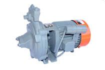 Kirloskar Monobloc Pumpset type KDS