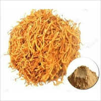 Herbal Dried Cordyceps Powder