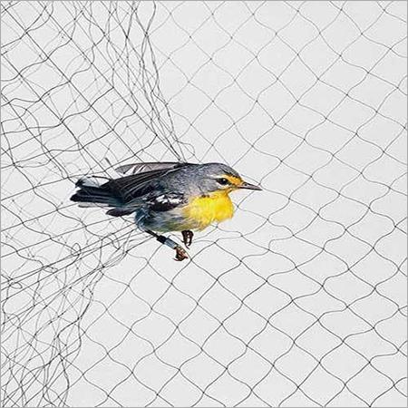 Anti Bird Net
