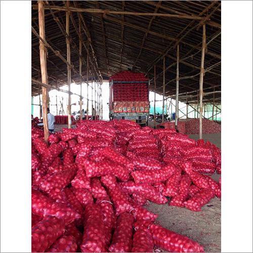 Organic Fresh Onion