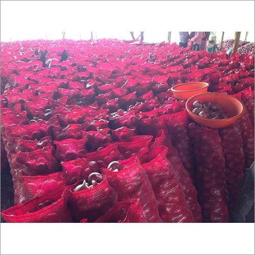 Bulk Fresh Red Onion