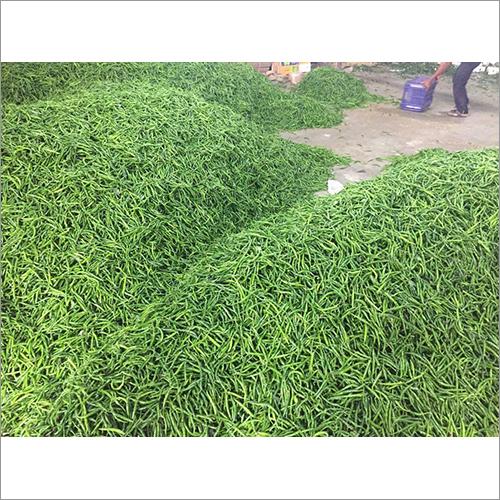 Bulk Green Chilli